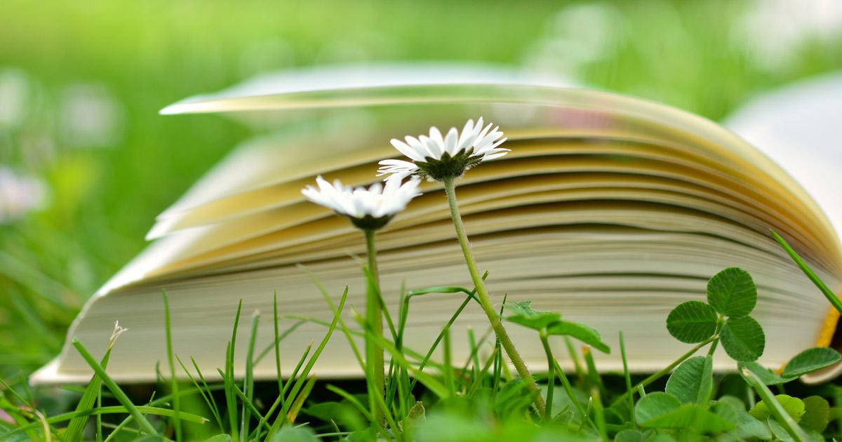 book-2304389