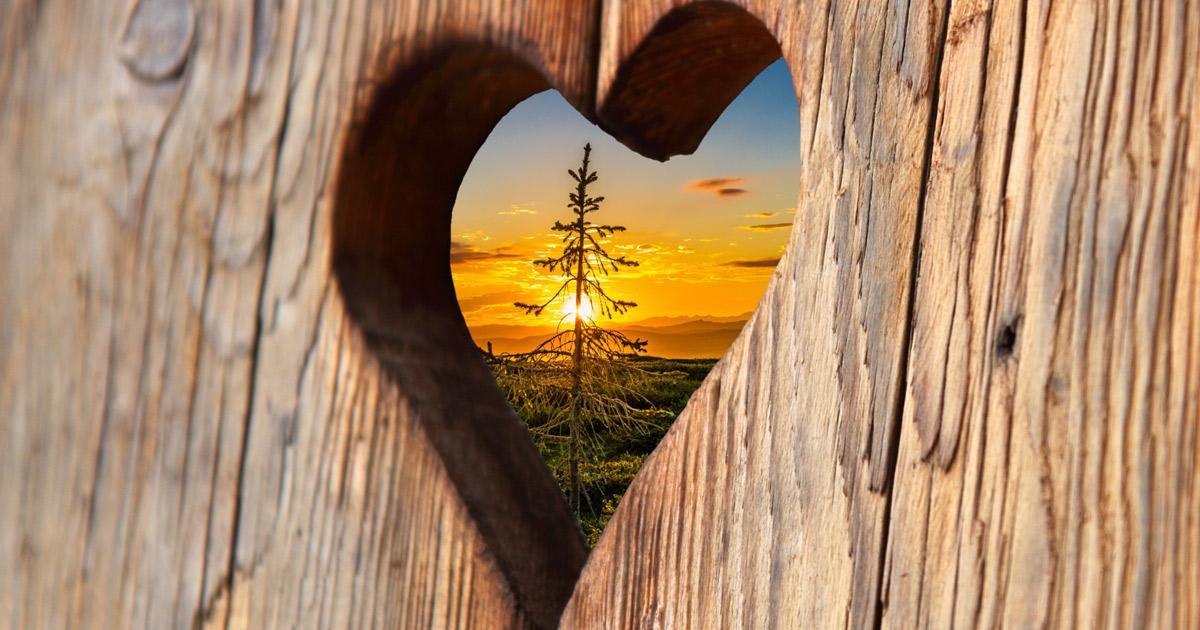 heart-2041866