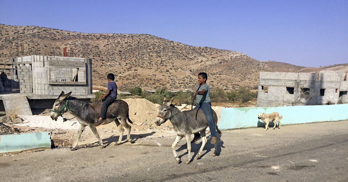 transportation-in-al-aqaba-a-village-of-300-in-the-west-bank-where-we-stayed
